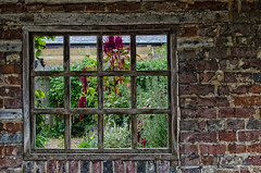 the edge of the garden (sure2talk) Tags: theedgeofthegarden window pentice brickwork kingjohnshouse romsey nikond7000 nikkor1855mmf3556afs sitdownlooklisten explore