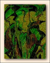 Digital Vine (Howard J Duncan) Tags: digital art abstract vine verdant howardduncan howardjduncan