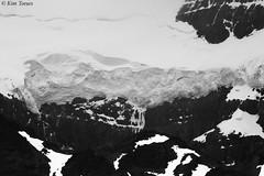 Rocky Mountain Glacier - Banff National Park, Alberta, Canada (Kim Toews Photography) Tags: rugged ancientglacier snow ice frozen canadianrockymountains bw monochrome blackandwhite kimtoews naturallight naturephotography canon400mmf56 canon canadiannationalpark banff nationalpark nationalparks canadiannationalparks banffnationalpark rockies canadianrockies rockymountains canada alberta outdoor glacier mountain landscape