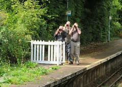 Brundall Railway Station Platform Photographers (Stuart Axe) Tags: linesidephotographers england uk unitedkingdom gb greatbritain rail railway railways countyofnorfolk chimper chimpers brundall brundallrailwaystation wherryline candid candidphotography