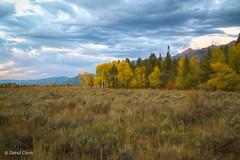 Autumn in the Rockies (buffdawgus) Tags: autumn landscape rockymountains canonef24105mmf4lisusm jacksonhole topazstudio lightroom6 fall canon5dmarkiii wyoming