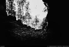 Grotte de la Luire (Ludtz) Tags: ludtz mamiya mamiyapresssuper23 sekor50|63 negative film ilfordpanfplus bw noirblanc mediumformat moyenformat 6x9 vercors montagne mountain mountains montagnes plateauduvercors drôme 26 saintagnanenvercors grotte grottedelaluire cave iso50