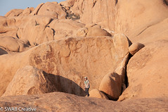 2018-09-03_172729.jpg (Adrian Berry from Ratley) Tags: best 201808namibia