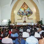 Ordination (7)