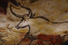 JLF18981 (jlfaurie) Tags: lascaux iv préhistoire cave grotte reconstitution musée museum museo prehistoria prehistoric painting peintures pinturas montignacsurvézère jlfr lucila mechas mpmdf jlfaurie pentaxk5ii