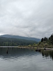Westwood Lake (stephenwilley) Tags: trees forest lake vancouverisland nanaimo