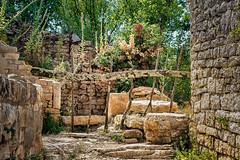 The path ends here (rwfoto_de) Tags: pentaxda16454 dvigrad istrien sehenswürdigkeiten ruine europa urlaub kroatien kanfanar istarskažupanija hrchnik ereignisse hr