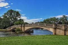 Beautiful Bridge!😊 (LeanneHall3 :-)) Tags: bridge lake green grass leaves trees branches blue sky skyscape white clouds cloudsstormssunsetssunrises eastpark hull kingstonuponhull landscape canon 1300d groupenuagesetciel
