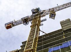Raising crane (Tony Tomlin) Tags: whiterockbc britishcolumbia canada southsurrey construction crane