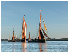 294A4539-Edit.jpg (merseamillsy) Tags: smack thamesbarge oystersmack barge colnebargematch sailing