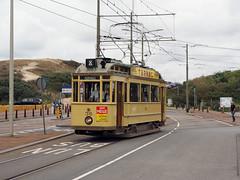 HTM 36 (jvr440) Tags: tram trolley strassenbahn htm den haag sgravenhage haags openbaar vervoer museum tramweg stichting ombouwer 36