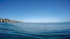 GOPR0282.00_05_34_25.Still031 (Compassionate) Tags: lajolla lajollacove lajollashores snorkel snorkeling ocean sea swimming