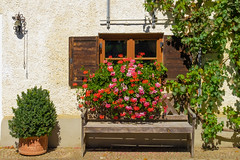 Happy Window Wednesday! (Janos Kertesz) Tags: fenster bench bank rural bavaria bayern house window red flower home architecture color colorful building summer nature old facade green