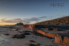 "Rock Light ""Explored"" (miketonge) Tags: bamburghcastle bamburgh beach sunrise rocks northumberland northumbria sky dawn light seaweed"