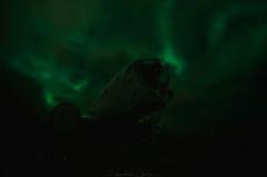G h o s t w o r l d (_Amritash_) Tags: ghostworld aurora auroraborealis northernlights plane wreck planewreckage wreckage blackbeach iceland night nightscape nightsky