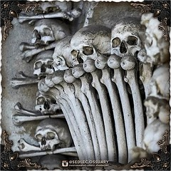 """""""To exist is to change, to change is to mature, to mature is to go on creating oneself endlessly."""" - Henri Bergson . 💀Turn on post notifications, click link in BIO to follow along on our journey, and sign up on our mailing list at: ☩ sedlecossuary.m (Sedlec Ossuary Project) Tags: sedlecossuaryproject sedlec ossuary project sedlecossuary kostnice kutnahora kutna hora prague czechrepublic czech republic czechia churchofbones church bones skeleton skulls humanbones human mementomori memento mori creepy travel macabre death dark historical architecture historicpreservation historic preservation landmark explore unusual mechanicalwhispers mechanical whispers instagram ifttt"""
