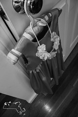 M&S rd 1-18 (alanschererphotographer) Tags: bride flowergirl family child girl wedding familyphotos