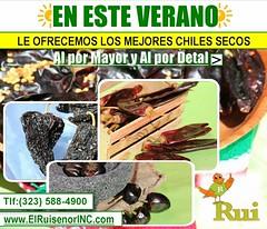 Mexico refrescante (El Ruisenor) Tags: verano summer ruiseñor mexico los angeles la mx horchata recetas chia jamaica