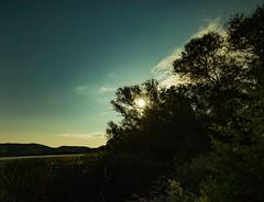 Laacher See im Mondschein (clemensgilles) Tags: lake deutschland rheinlandpfalz moon moonlight moonshine nachtfotografie night germany eifel beautiful