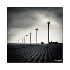 Somewhere Nearby XXIII (Frank Hoogeboom) Tags: randmeer netherlands holland nederland sky clouds monochrome splittone lines square fineart longexposure windmill crops fields landscape moody dark scenic zeewolde flevoland art green energy