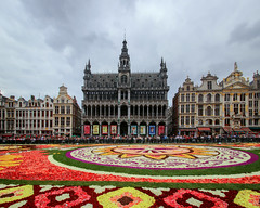 Flower carpet in Brussels, edition 2018 (Frans.Sellies) Tags: img86348635stitch belgium belgique belgien belgië