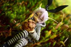 BOB_1119 (AeroHail) Tags: busoushinki 武装神姫 toyphotography busou shinki