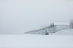 294A1215-Edit-3.jpg (merseamillsy) Tags: snow