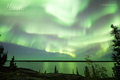 Borealis Science & Photo Tours [8442] (josefrancisco.salgado) Tags: canada d5 nikon northernlights northwestterritories sigma sigma14mmf18dghsmart yellowknife astrofotografía astronomy astronomía astrophotography aurora auroraborealis aurorae auroras cielonocturno estrellas exposiciónlarga lago lake longexposure night nightsky stars