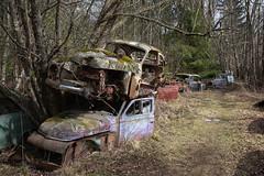 Begleiter (mariburg) Tags: rotten marode alt forgotten ruin decay desolate derelict canonef1635mmf4lisusm canoneos5dmarkiv rustycars auto