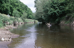 45174 Shrewsbury 29 mei 2005 (peter_schoeber) Tags: shrewsbury29mei2005 shrewsbury 29mei2005 riversevern