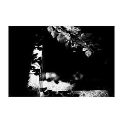 tokyo (s_inagaki) Tags: monochrome walking bnw street モノクロ 白黒 bw 散歩 blackandwhite スナップ snap 東京 スローフォト slowphoto tokyo japan