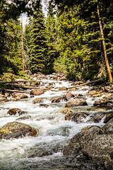 Lake Creek Falls (wyojones) Tags: wyoming lakecreek shoshonenationalforest chiefjosephhighway beartoothmountains beartoothplateau rapids rocks stream creek
