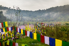 Blessed Land (abhishek.verma55) Tags: khecheopalrilake khecheopalri himalaya himalayas lake ©abhishekverma landscape nature travel canon550d photography flickr prayerflags prayer holy sacred yuksom travelphotography beautiful bank clouds cloudy cloudscape cloud travelphotos beauty beautifulnature incredibleindia sikkim westsikkim colourful colour colorful colors colours landscapes landscapelovers landscapelover india outdoor outdoors serene serenity greens green greenery trees tree forest culture buddhism scenic scenery scene hills hillside mountains mountain mountainside