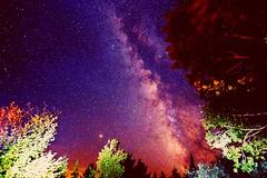 The great gig in the sky (crazyxavphotos) Tags: astrophotography astronomy milkyway milkywaygalaxy milkywaychasers nightphoto nightsky starrynight stars