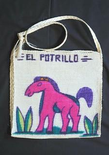 Woven Izote Bag Guerrero Nahua Mexico