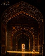 The Morning Ritual (Agra, India 2015) (Alex Stoen) Tags: 1dx agra alexstoen alexstoenphotography canon canoneos1dx geotagged india tajmahal travel vacation