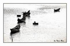 IMG_5994_boat and coracle (Tuan Râu) Tags: 1dmarkiii 14mm 100mm 135mm 1d 1dx 2470mm 2018 50mm 70200mm canon canon1d canoneos1dmarkiii canoneos1dx bw black blackandwhite white đentrắng đen đenvàtrắng trắng boat coraclet thuyền thuyềnthúng reflection lăngcô langcobeach huế tuanrau tuan tuấnrâu2018 râu httpswwwfacebookcomrautuan71