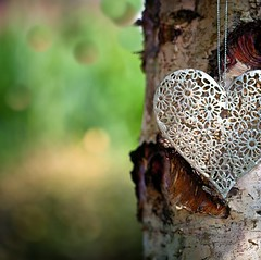 Love (Missy Jussy) Tags: love heart silverheart niknak tree silverbirch bokeh bubblybokeh blur outdoor naturallight sunlight macro 100mm ef100mmf28macrousm ef100mm canon100mm 5d canon5dmarkll canon5d canoneos5dmarkii canon closeup upclose