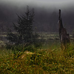 Karsee hoch in den Bergen thumbnail