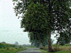 una strada del Gers (fotomie2009) Tags: textured ddg creativity giocando trees alberi green road strada texture
