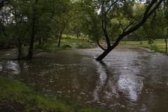 (Theresa Best) Tags: flood nature rain storm thunderstorm mchenrycounty woodstock northernillinois summer flooding september canon canon760d canont6s canon8000d water theresabest