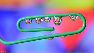 Trombone - 5863