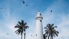 Sri Lanka Galle (cle_mobil) Tags: asia travel raven xt20 fujifilm galle lighthouse palm blue srilanka