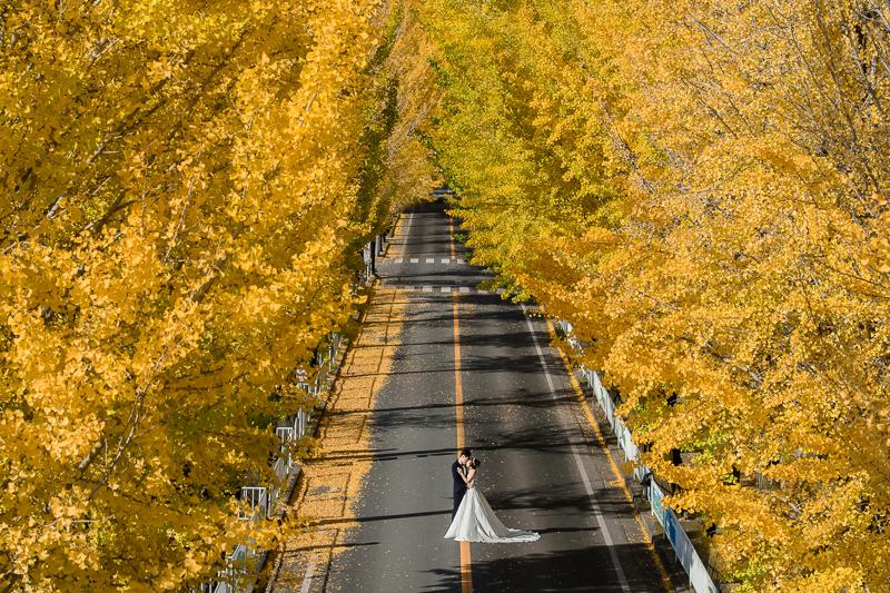 id tailor,日本婚紗,京都婚紗,京都楓葉婚紗,海外婚紗,新祕巴洛克,楓葉婚紗, MSC_0047