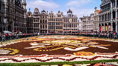 Flower Carpet 2018 (Lцdо\/іс [Offline, on holiday]) Tags: flower carpet brussels bruxelles bruxelloise capital europe europa belgique août august travel unesco grand place square big flowers visit belgium belgie lцdоіс 2018 voyage citytrip cityscape