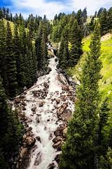 Lake Creek Falls (wyojones) Tags: wyoming beartoothhighway beartoothplateau shoshonenationalforest parkcounty lakecreekfalls rapids cascade fan chute lakecreek lakecreekbridge ccc lakecreeknewbridge trres rocks waterfalls falls creek stream mountain granite