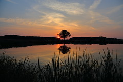 IMG_3771 (geraldtourniaire) Tags: canon landschaft eos6d ef 24105l natur nature sonnenaufgang franken mittelfranken 6d