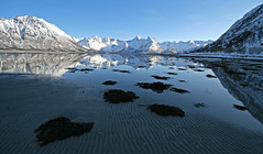 Fjord at Lofoten