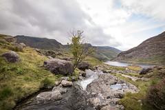 Wales 003 (maurovinco) Tags: wales galles stream ruscello montagne mountains cloud nuvole acqua water panorama landscape nikon d750
