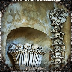 Garlands of skulls and femur crossbones, topped with a rosette of pelvic bones, frame the archway and stairs leading down to the rest of the ossuary. However, the most impressive part of the entrance decor, are two giant bone chalices that flank the stair (Sedlec Ossuary Project) Tags: sedlecossuaryproject sedlec ossuary project sedlecossuary kostnice kutnahora kutna hora prague czechrepublic czech republic czechia churchofbones church bones skeleton skulls humanbones human mementomori memento mori creepy travel macabre death dark historical architecture historicpreservation historic preservation landmark explore unusual mechanicalwhispers mechanical whispers instagram ifttt